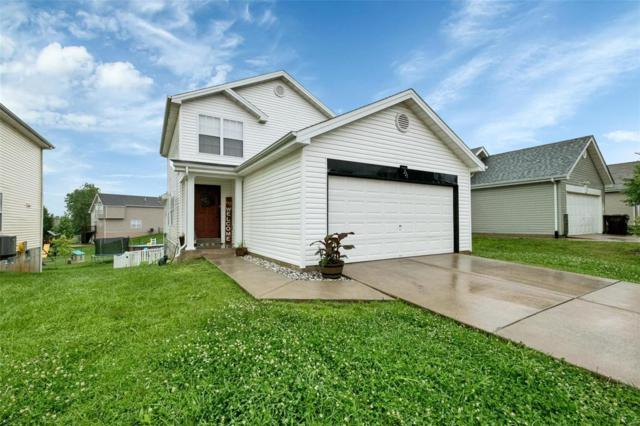 221 Autumn Oaks Drive, Troy, MO 63379 (#19045597) :: The Becky O'Neill Power Home Selling Team