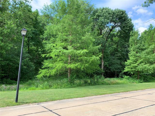 145 Shar Rye Drive, Belleville, IL 62220 (#19045970) :: Realty Executives, Fort Leonard Wood LLC