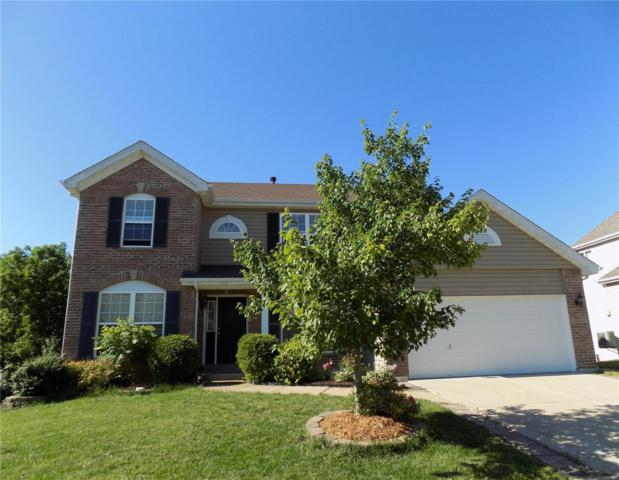 256 Magnolia Trace Drive, Ballwin, MO 63021 (#19046300) :: Holden Realty Group - RE/MAX Preferred