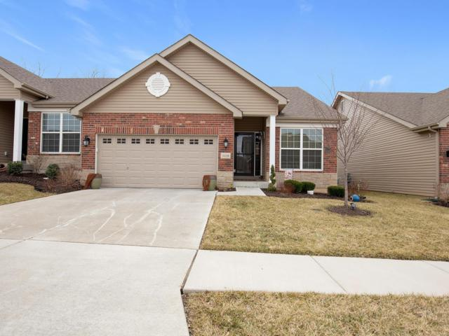 16158 Amber Vista Drive, Ballwin, MO 63021 (#19046306) :: Clarity Street Realty