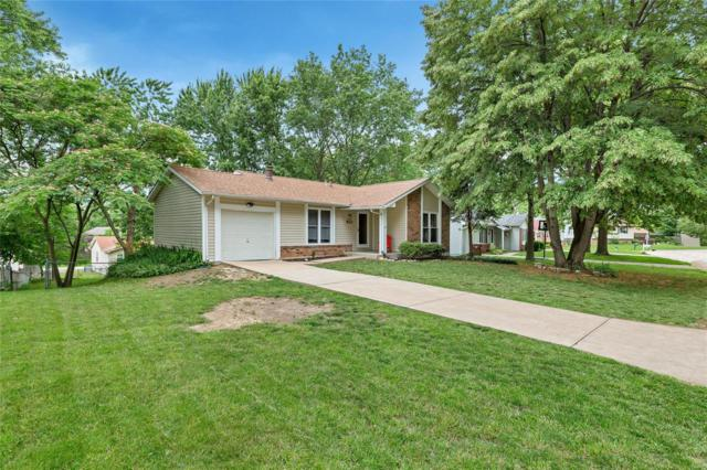 119 Mill Spring Lane, Saint Peters, MO 63376 (#19046344) :: RE/MAX Vision