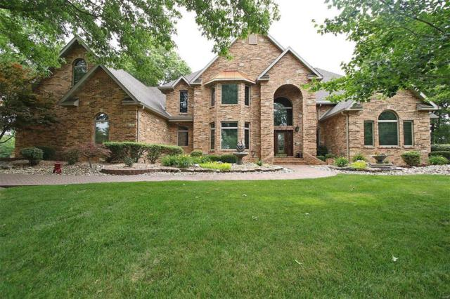6629 Fox View Drive, Edwardsville, IL 62025 (#19046397) :: The Becky O'Neill Power Home Selling Team