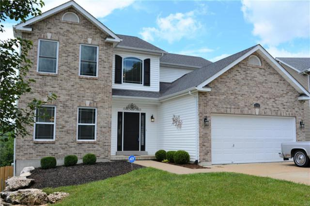 2842 Mallard Court, Imperial, MO 63052 (#19046497) :: Clarity Street Realty