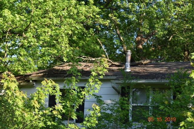 5322 Chouteau Avenue, De Soto, MO 63020 (#19046569) :: RE/MAX Vision