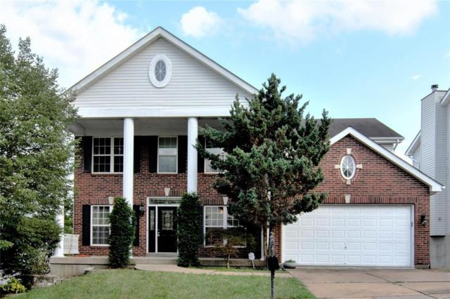 362 Summer Top Lane, Fenton, MO 63026 (#19046657) :: Holden Realty Group - RE/MAX Preferred