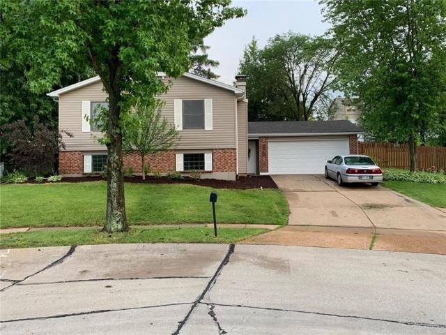 2642 Treeridge Trail, St Louis, MO 63129 (#19046665) :: RE/MAX Vision
