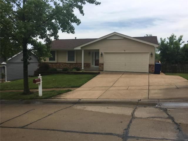 4332 Grand Marnier Drive, St Louis, MO 63129 (#19046692) :: RE/MAX Vision