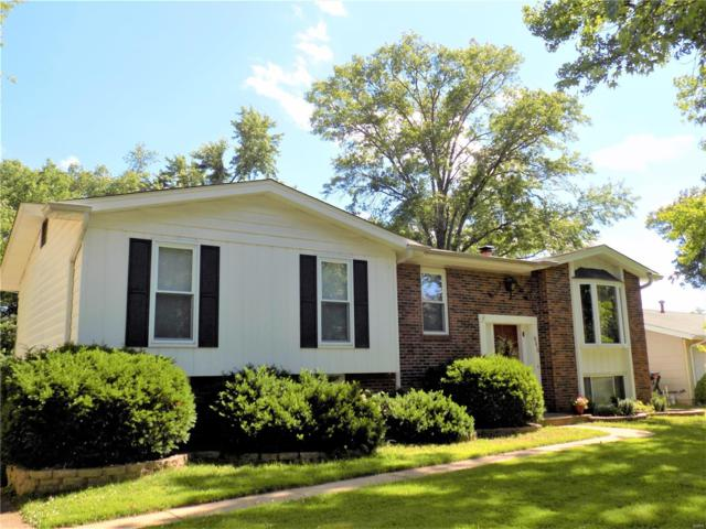 946 Brookvale Terr, Ballwin, MO 63021 (#19046709) :: Holden Realty Group - RE/MAX Preferred