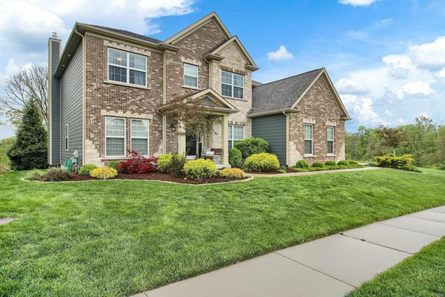 15335 Squires Way Drive, Chesterfield, MO 63017 (#19046727) :: RE/MAX Vision