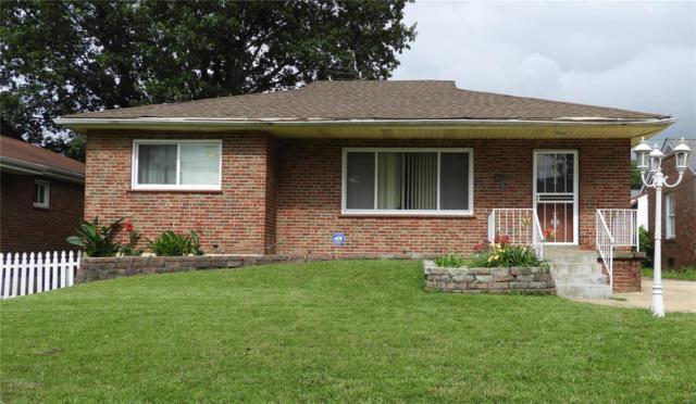 1087 N Hanley Road, University City, MO 63130 (#19046763) :: Kelly Hager Group | TdD Premier Real Estate