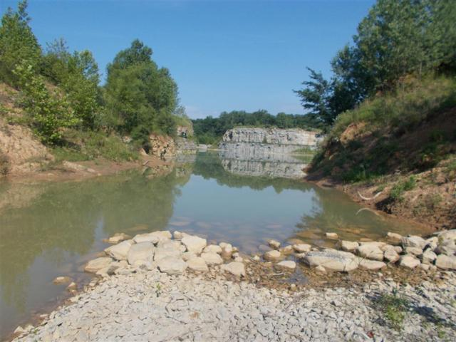 0 Kinkaid Stone Road, Ava, IL 62907 (#19047588) :: The Kathy Helbig Group