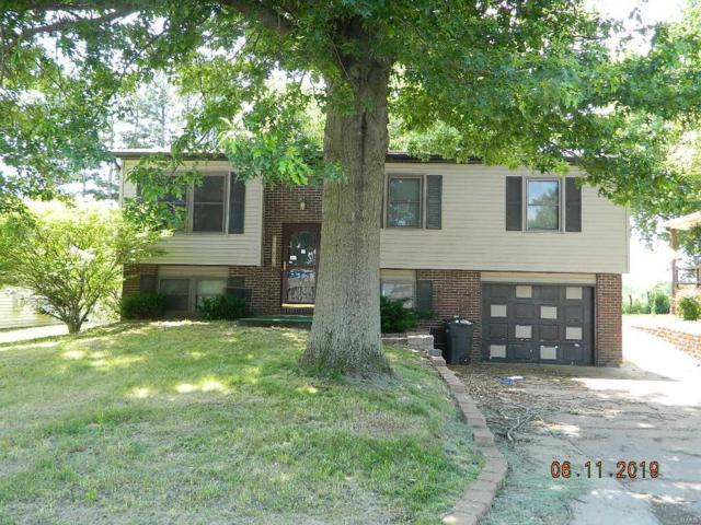 33959 Mustang Drive, Brighton, IL 62012 (#19047605) :: Clarity Street Realty