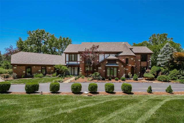 1215 Tammany Lane, Town and Country, MO 63131 (#19047809) :: Kelly Shaw Team