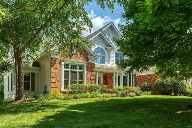 743 Kraffel Lane, Town and Country, MO 63017 (#19048476) :: Kelly Shaw Team