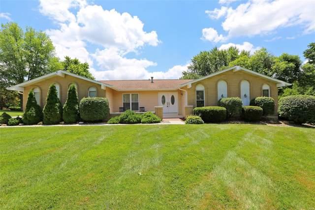 617 Woodbriar Lane, Saint Peters, MO 63376 (#19048590) :: Kelly Hager Group | TdD Premier Real Estate