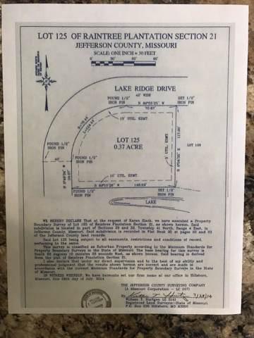 10168 Lake Ridge Drive, Hillsboro, MO 63050 (#19049010) :: Realty Executives, Fort Leonard Wood LLC