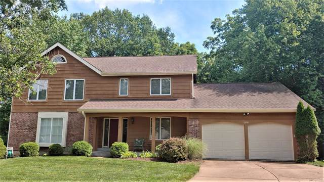 1610 Woodside View Lane, Ballwin, MO 63021 (#19050124) :: Kelly Shaw Team