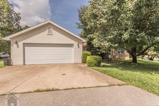 20345 Henry Lane, Dixon, MO 65459 (#19050547) :: Matt Smith Real Estate Group
