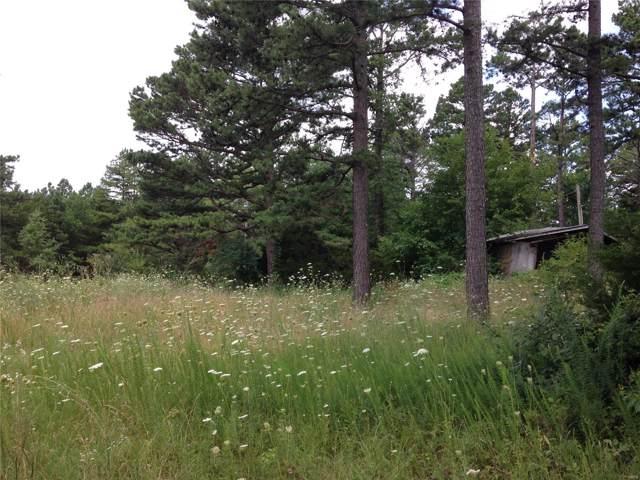489 County Road 6020, Salem, MO 65560 (#19050628) :: Matt Smith Real Estate Group