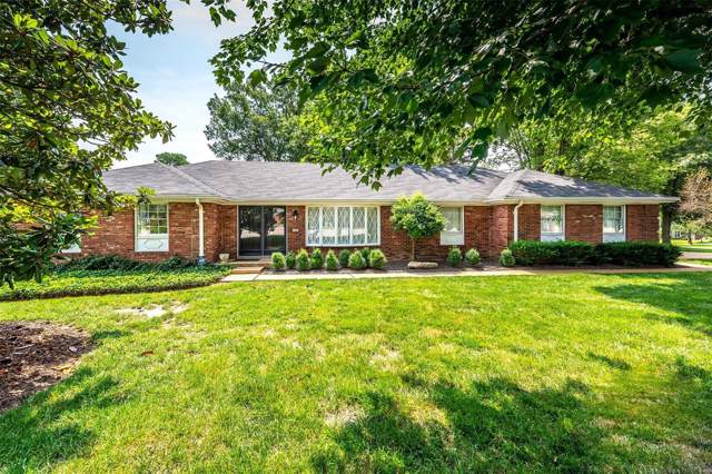 349 Cherry Hill Drive, Ellisville, MO 63011 (#19051191) :: The Kathy Helbig Group