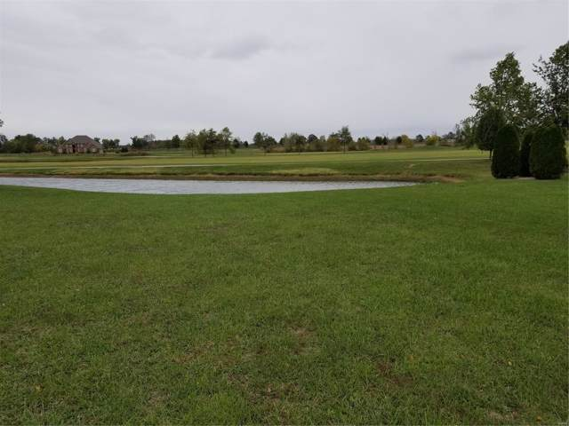 0 Spring Valley Dr Lot #75, OKAWVILLE, IL 62271 (#19052722) :: Fusion Realty, LLC