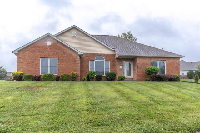 3221 Joel Drive, Swansea, IL 62226 (#19052751) :: The Becky O'Neill Power Home Selling Team