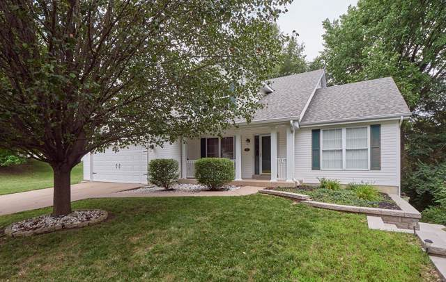 5 Fawn Valley Court, Saint Peters, MO 63376 (#19053271) :: Clarity Street Realty