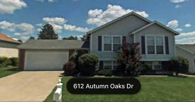 612 Autumn Oaks, Saint Peters, MO 63376 (#19053496) :: The Kathy Helbig Group