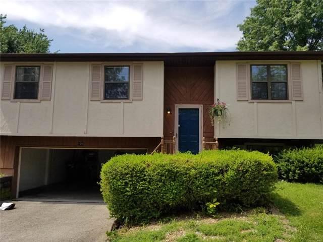 120 Arabelle, Belleville, IL 62220 (#19053528) :: The Kathy Helbig Group