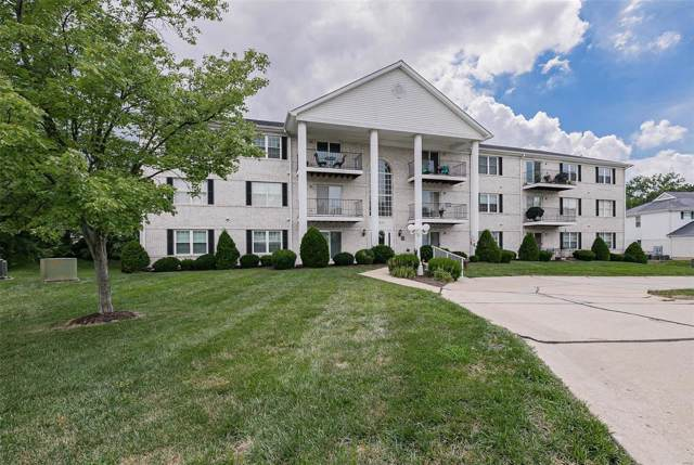 3624 Colonia Pl G, St Louis, MO 63125 (#19053535) :: The Becky O'Neill Power Home Selling Team