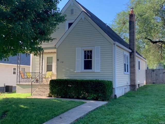 208 9th Avenue, Crystal City, MO 63019 (#19054503) :: Walker Real Estate Team