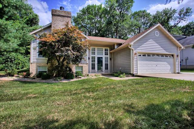 832 E Lake Drive, Edwardsville, IL 62025 (#19056169) :: The Kathy Helbig Group