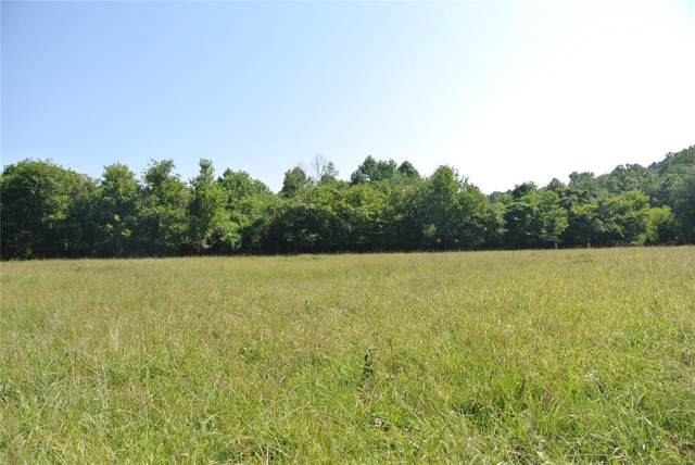 4997 Highway T, Perryville, MO 63775 (#19056445) :: The Kathy Helbig Group