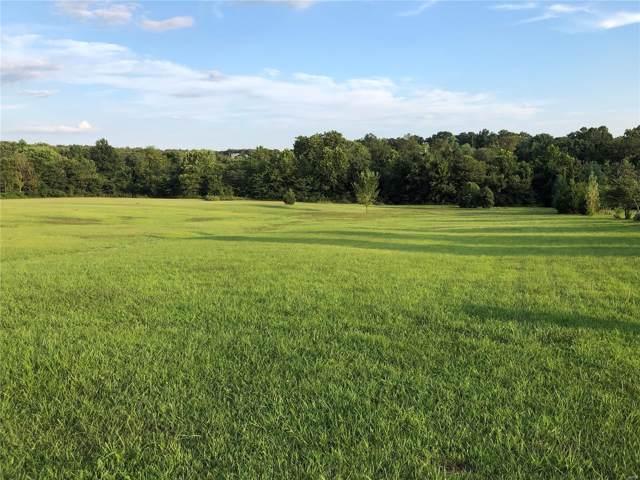 4 Magnolia Lane, Rolla, MO 65401 (#19056810) :: Walker Real Estate Team