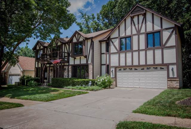211 Chianti Court, Florissant, MO 63031 (#19057315) :: The Kathy Helbig Group