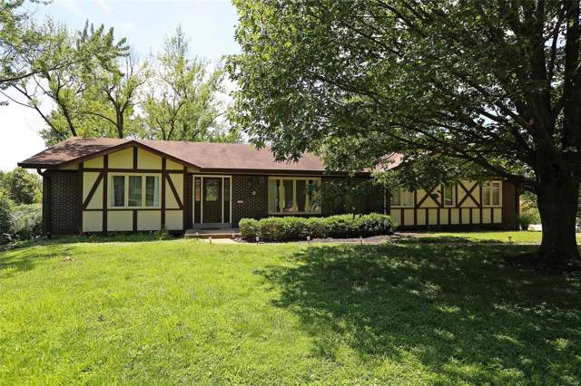 167 Emerald Green Court, Creve Coeur, MO 63141 (#19057369) :: St. Louis Finest Homes Realty Group