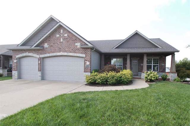 917 Stone Briar Drive, O'Fallon, IL 62269 (#19057381) :: St. Louis Finest Homes Realty Group
