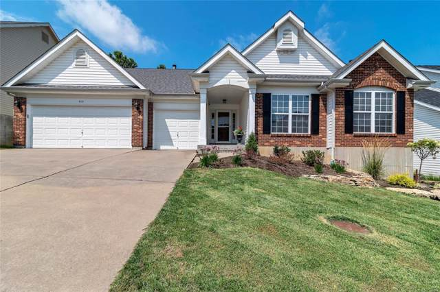 459 Meramec View Drive, Eureka, MO 63025 (#19059467) :: RE/MAX Professional Realty
