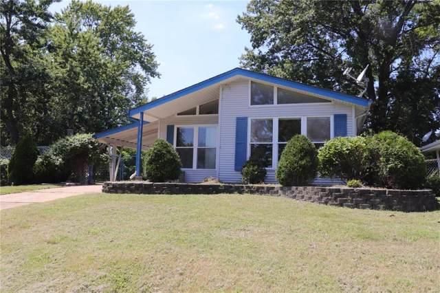 317 Chamberlin Drive, Ballwin, MO 63021 (#19059678) :: The Kathy Helbig Group