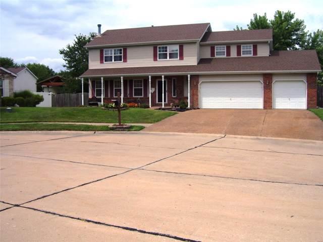 17 Wild Horse Court, Troy, IL 62294 (#19059698) :: Walker Real Estate Team