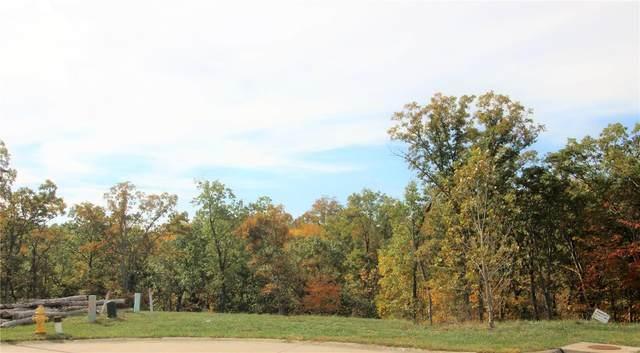 223 Redmond Pines #31, Wentzville, MO 63385 (#19059931) :: Krista Hartmann Home Team