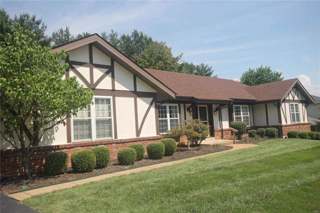 14233 Dinsmoor Drive, Chesterfield, MO 63017 (#19059999) :: The Becky O'Neill Power Home Selling Team