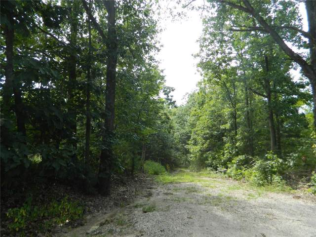 2401 County Rd 157, Auxvasse, MO 65231 (#19060195) :: Clarity Street Realty