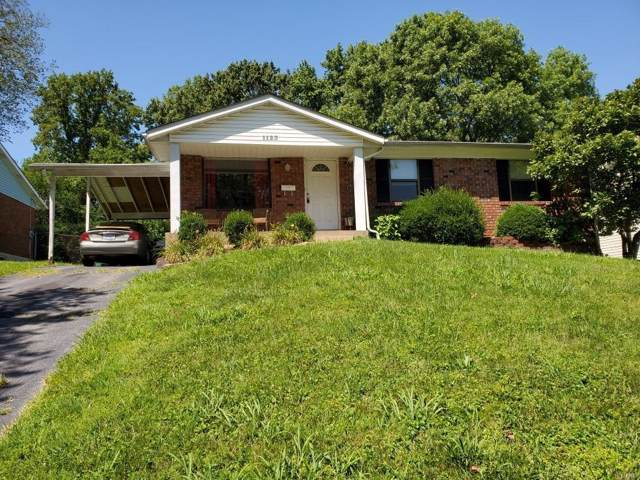 1123 N. Rock Hill Road, Webster Groves, MO 63119 (#19060553) :: RE/MAX Vision