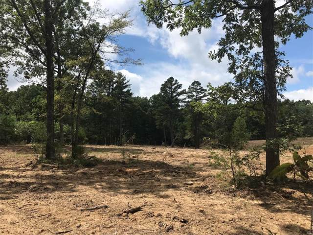 69 Iron County Rd 55, Belleview, MO 63623 (#19061044) :: Holden Realty Group - RE/MAX Preferred
