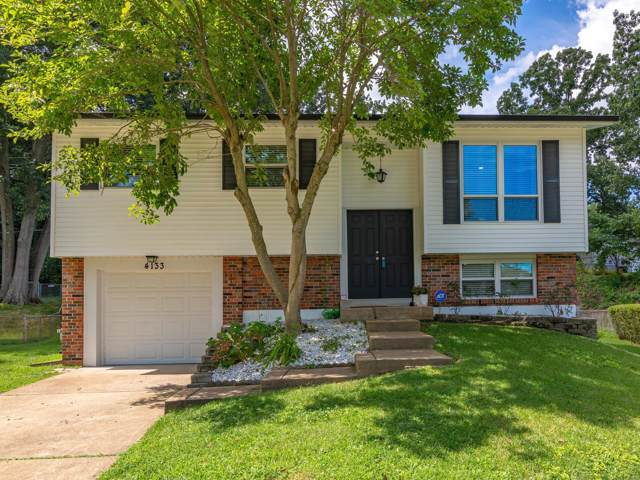 4133 Pasco Drive, St Louis, MO 63129 (#19061154) :: The Becky O'Neill Power Home Selling Team