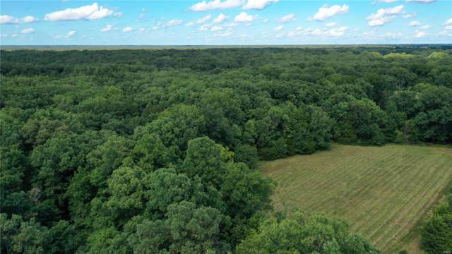 0 County Road 133, Steedman, MO 65077 (#19061360) :: Holden Realty Group - RE/MAX Preferred