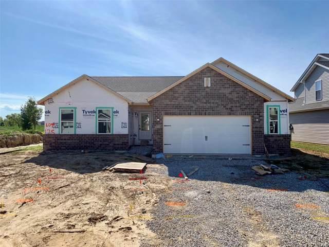 860 Bridgeway Drive, O'Fallon, IL 62269 (#19061600) :: St. Louis Finest Homes Realty Group