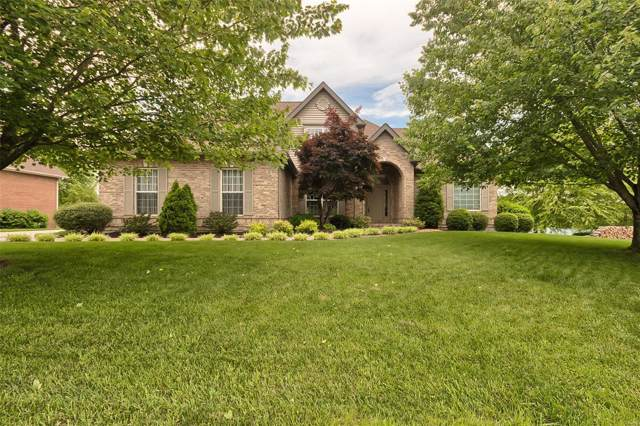339 Lake View Drive, Washington, MO 63090 (#19061752) :: Clarity Street Realty