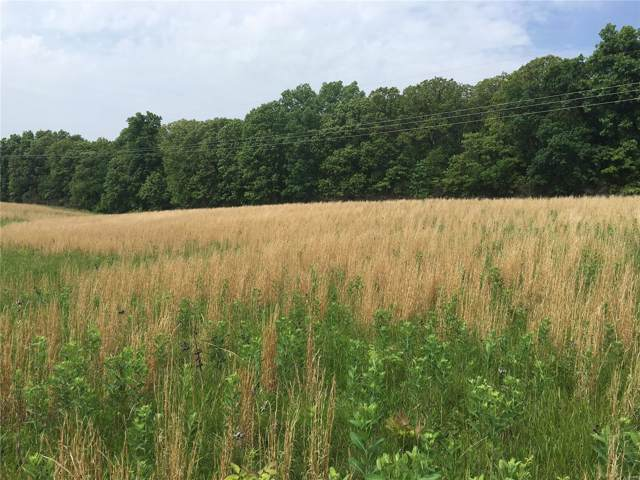 11 .75 Acres M/L On East Hwy 47, Winfield, MO 63389 (#19062556) :: The Kathy Helbig Group